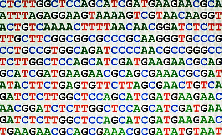 Secuenciación_del_ADN